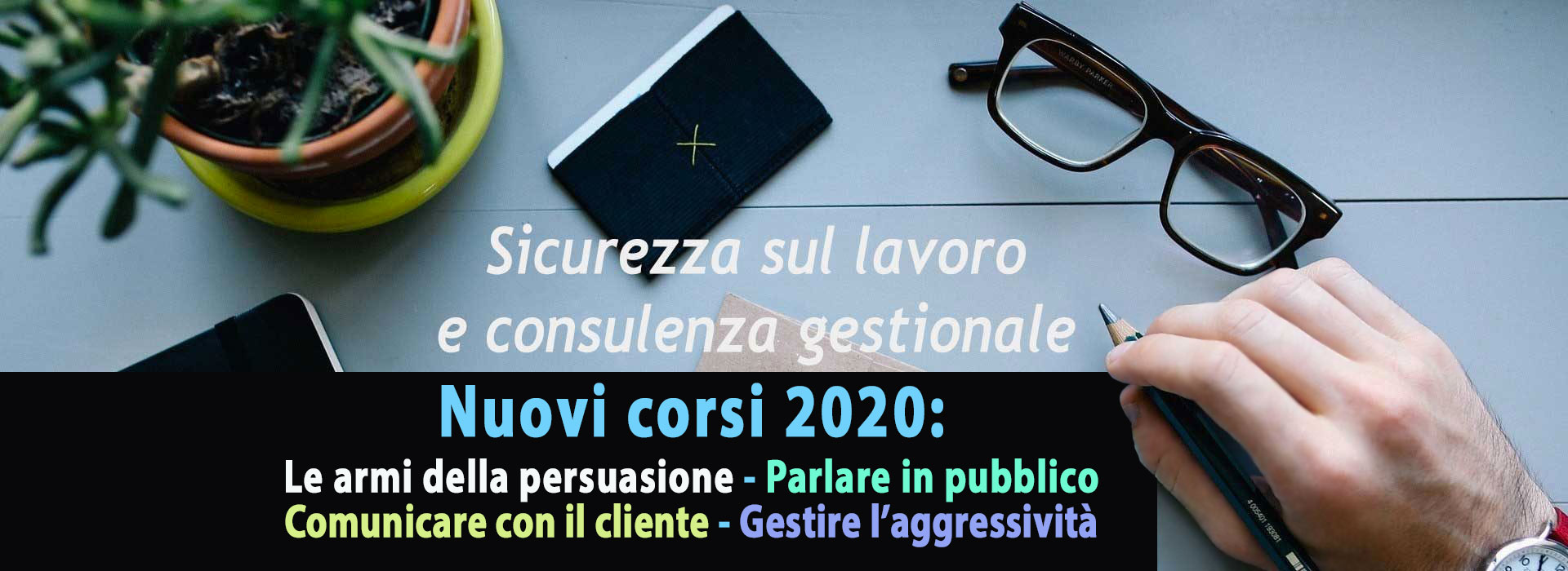 Lonza Consulting Group